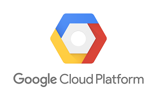 Google Cloud Platform Partners
